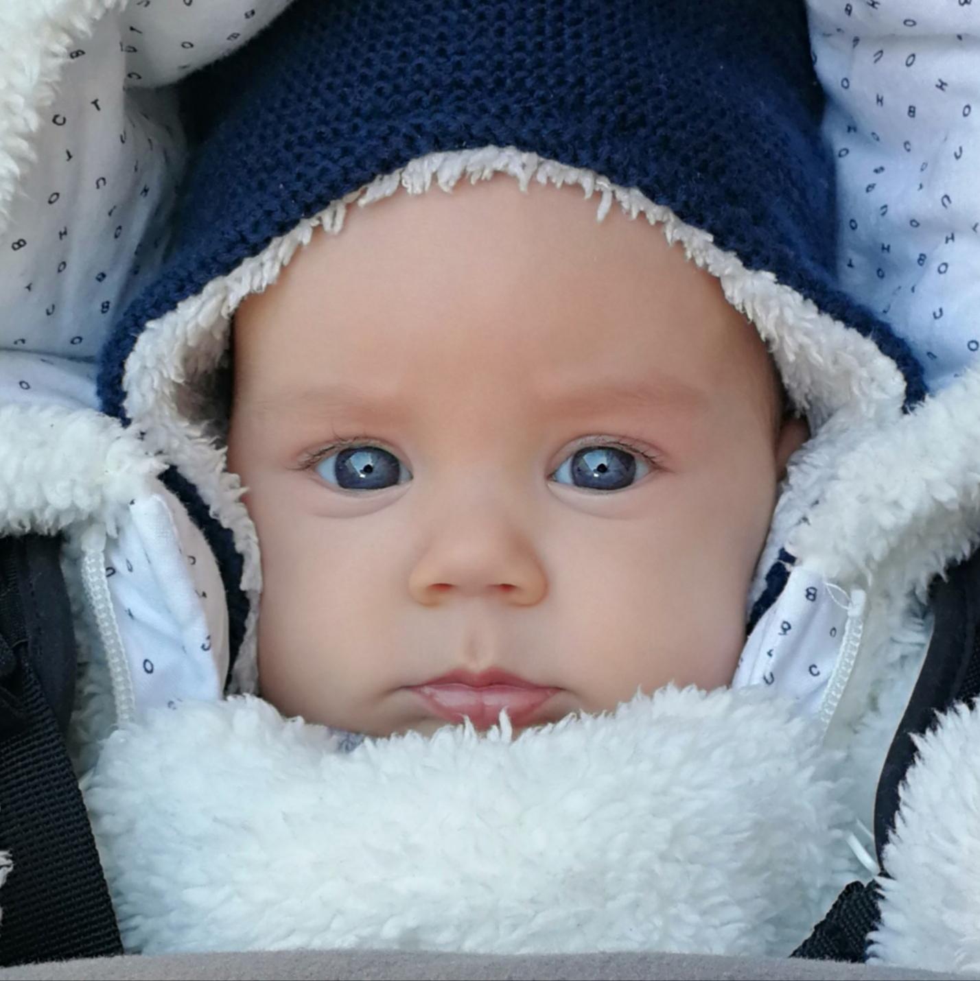 photographe bébés